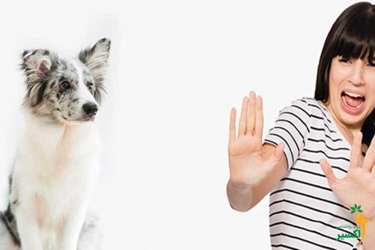 آشنایی با ترس از سگ