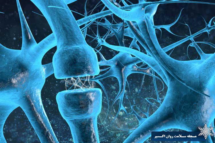 تفاوت شیمی مغز افراد بیش فعال با افراد عادی
