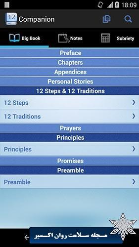 12 Steps AA Companion
