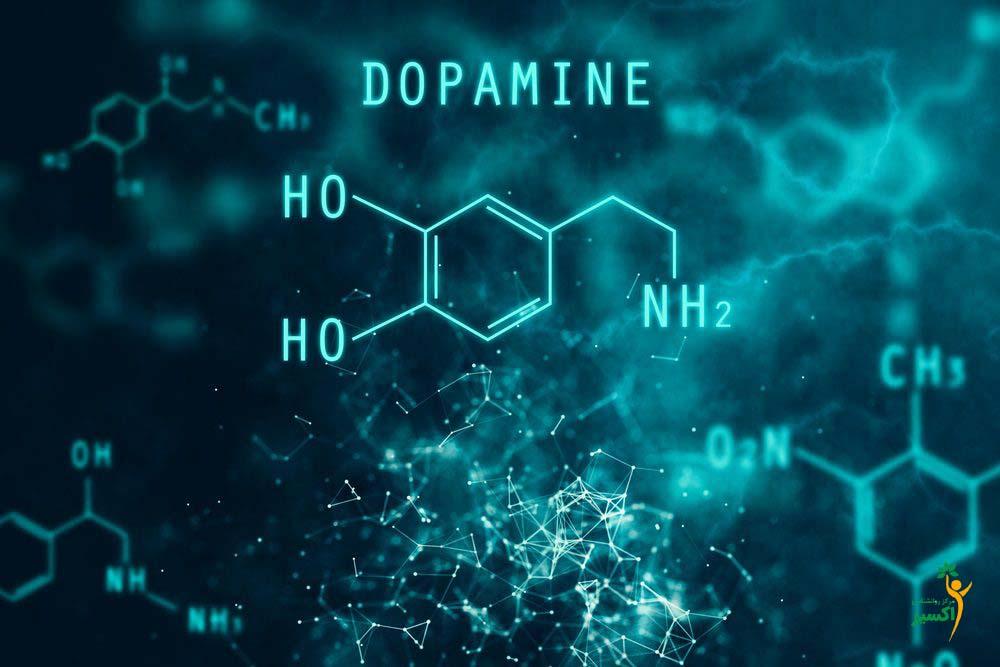 کاهش دوپامین علت قدرت ریسک پذیری پایین افراد پیر