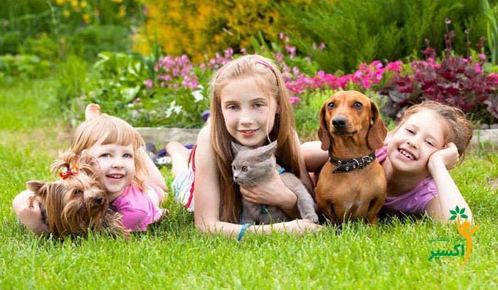 مزایای داشتن سگ به عنوان حیوان خانگی