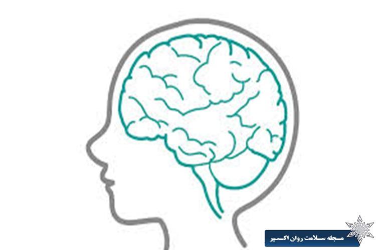 افراد عاطفی ساختار مغزی متفاوتی دارند